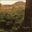 sorties cd     dvd - Sorties Janvier 2009 Bird
